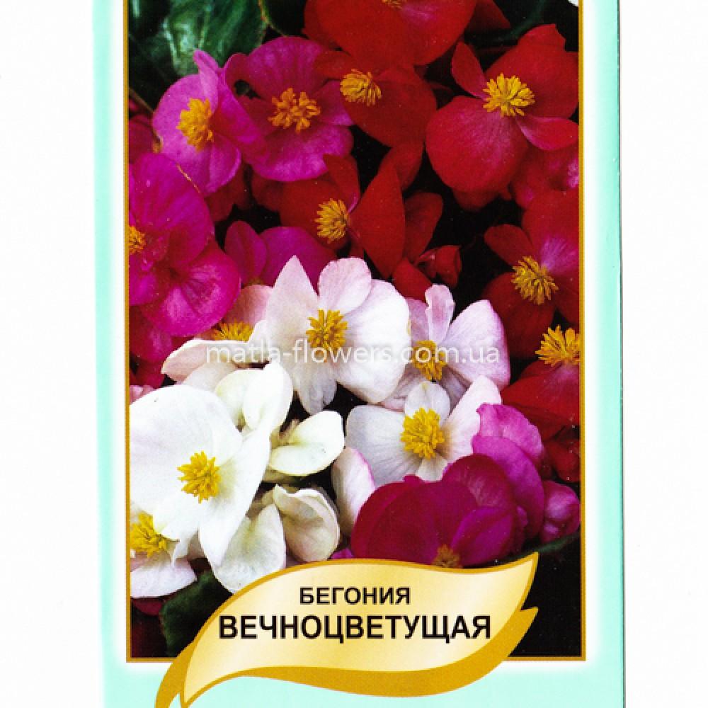 Бегонія вічноквітуча Суміш 0,1 г (насіння)