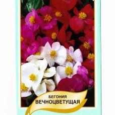 Бегонія вічноквітуча Суміш 0,1 г