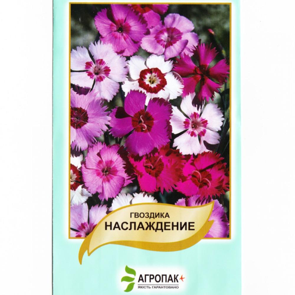 Гвоздика Насолода 0,5 г (насіння)