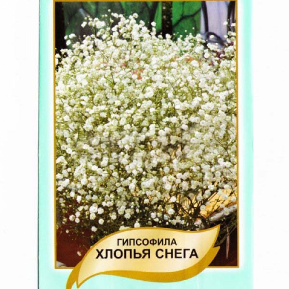 Гіпсофіла Лопатий Сніг 0,1 г (насіння)