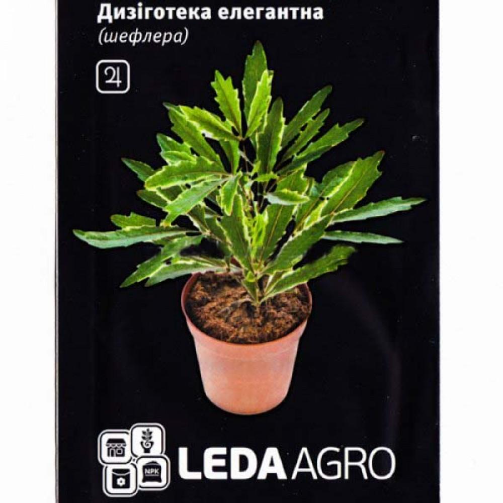 Дизіготека Елегантна (Шефлера) 5 шт (насіння)