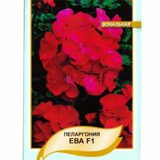 Пеларгонія Зональна Єва F1 Червоно-фіолетова 5 шт