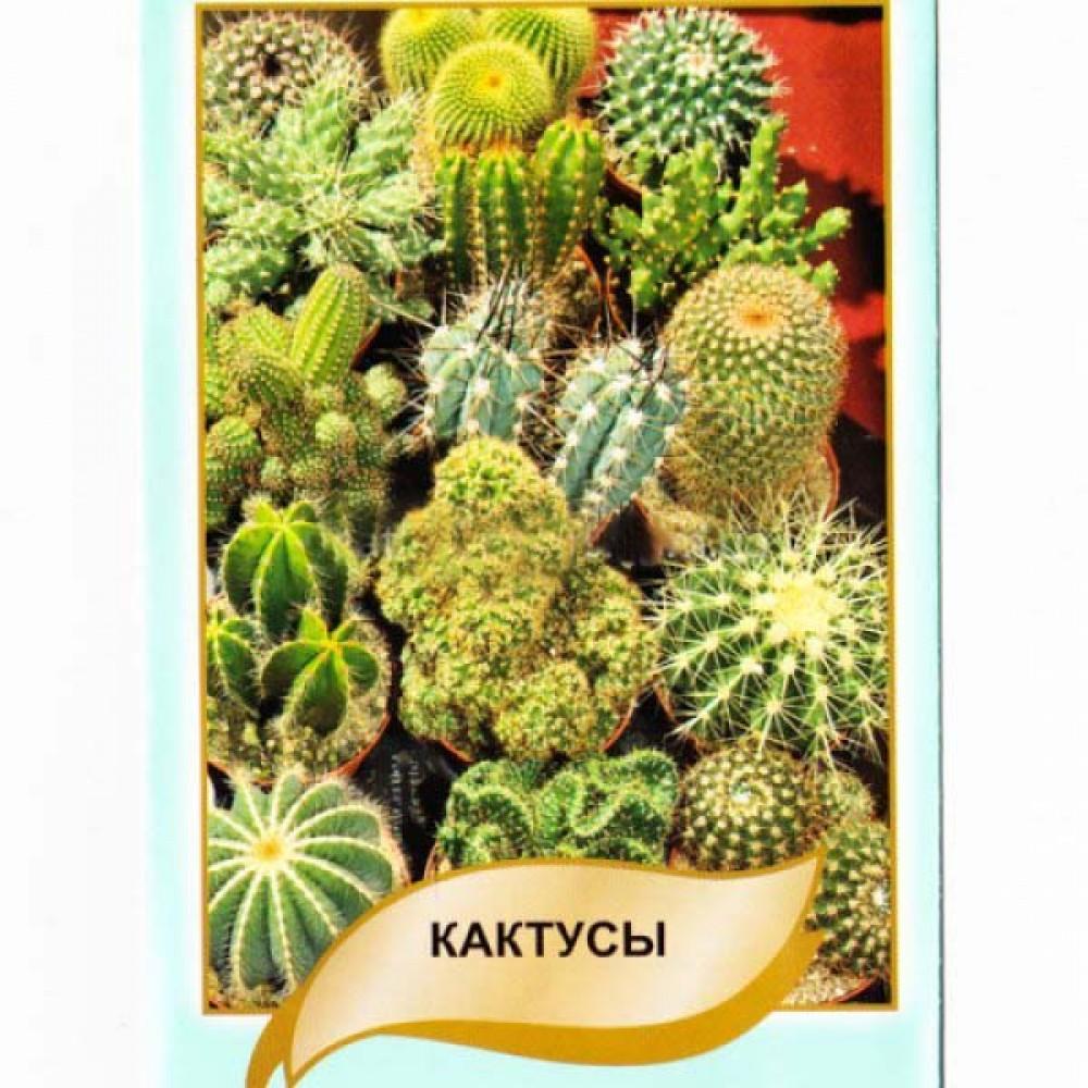 Кактуси Суміш 0,1 г (насіння)
