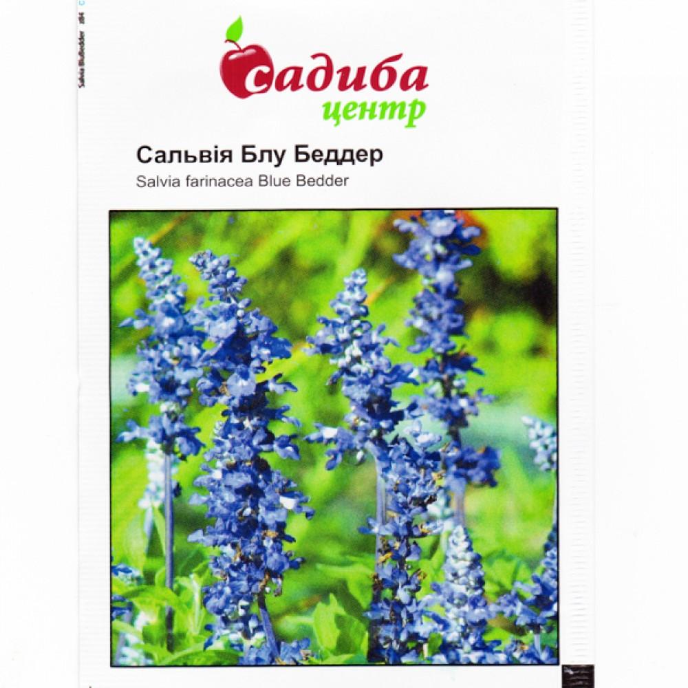Сальвія Блубеддер, синя 0,5 г (насіння)