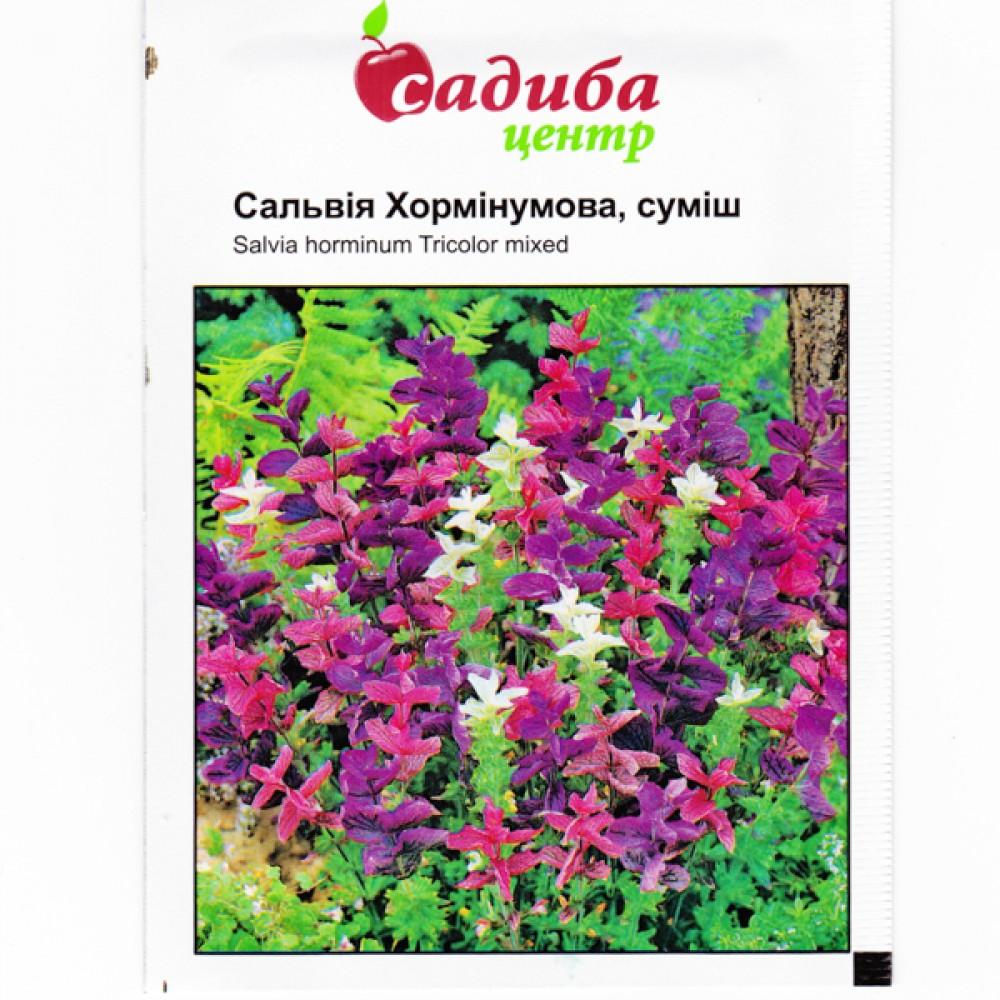 Сальвія Хормінумова 0,2 г (насіння)