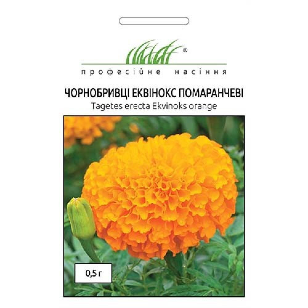Бархатцы Эквинокс оранжевые 0,5 г (семена)