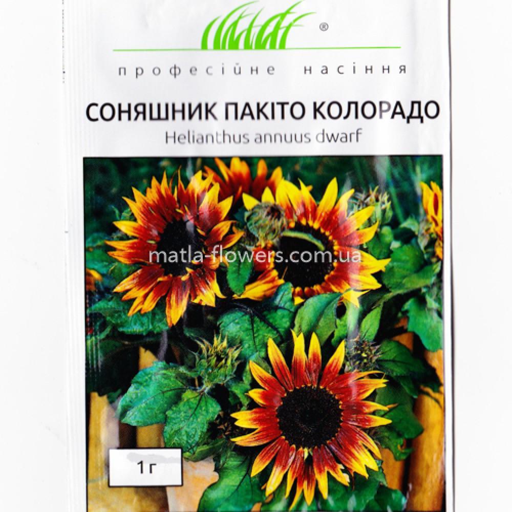 Соняшник Пакіто Колорадо суміш 1 г (насіння)