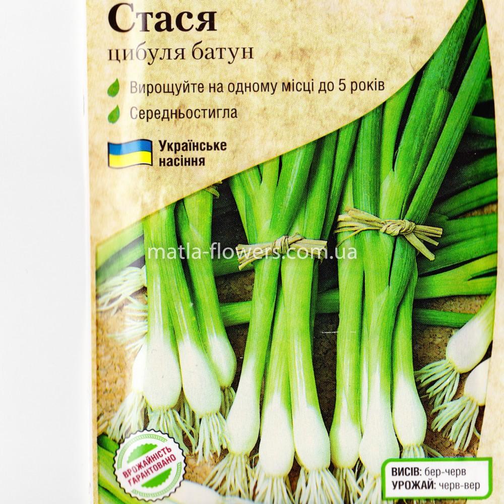 Цибуля Стася цибуля-батун 1 г (насіння)