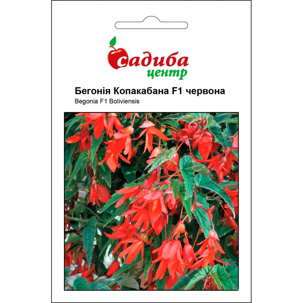 Бегонія Копакабана F1 ампельна червона 5 шт (насіння)