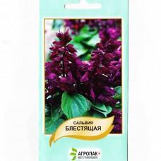 Сальвия пурпурно-фиолетовая 0,2 г