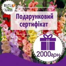 2000 грн - подарунковий сертифікат