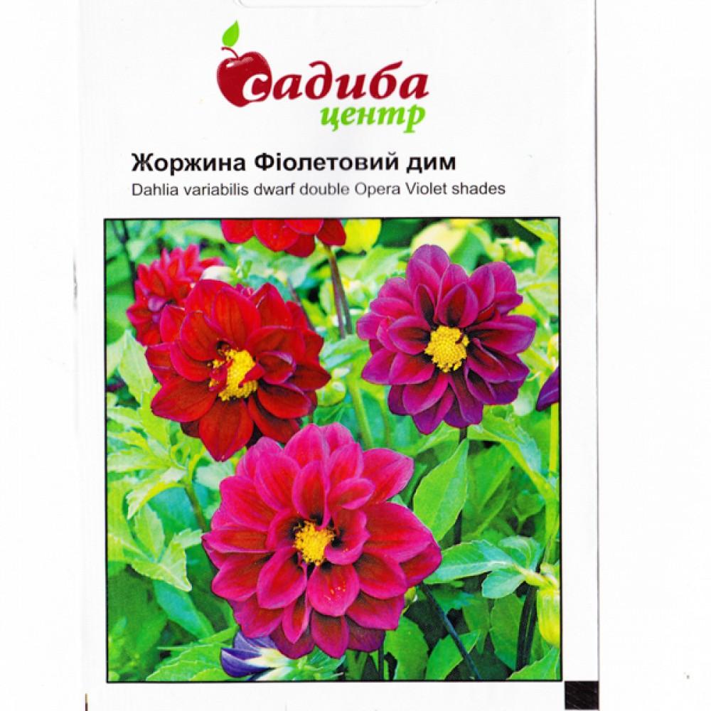 Жоржина Фіолетовий дим 0,1 г (насіння)