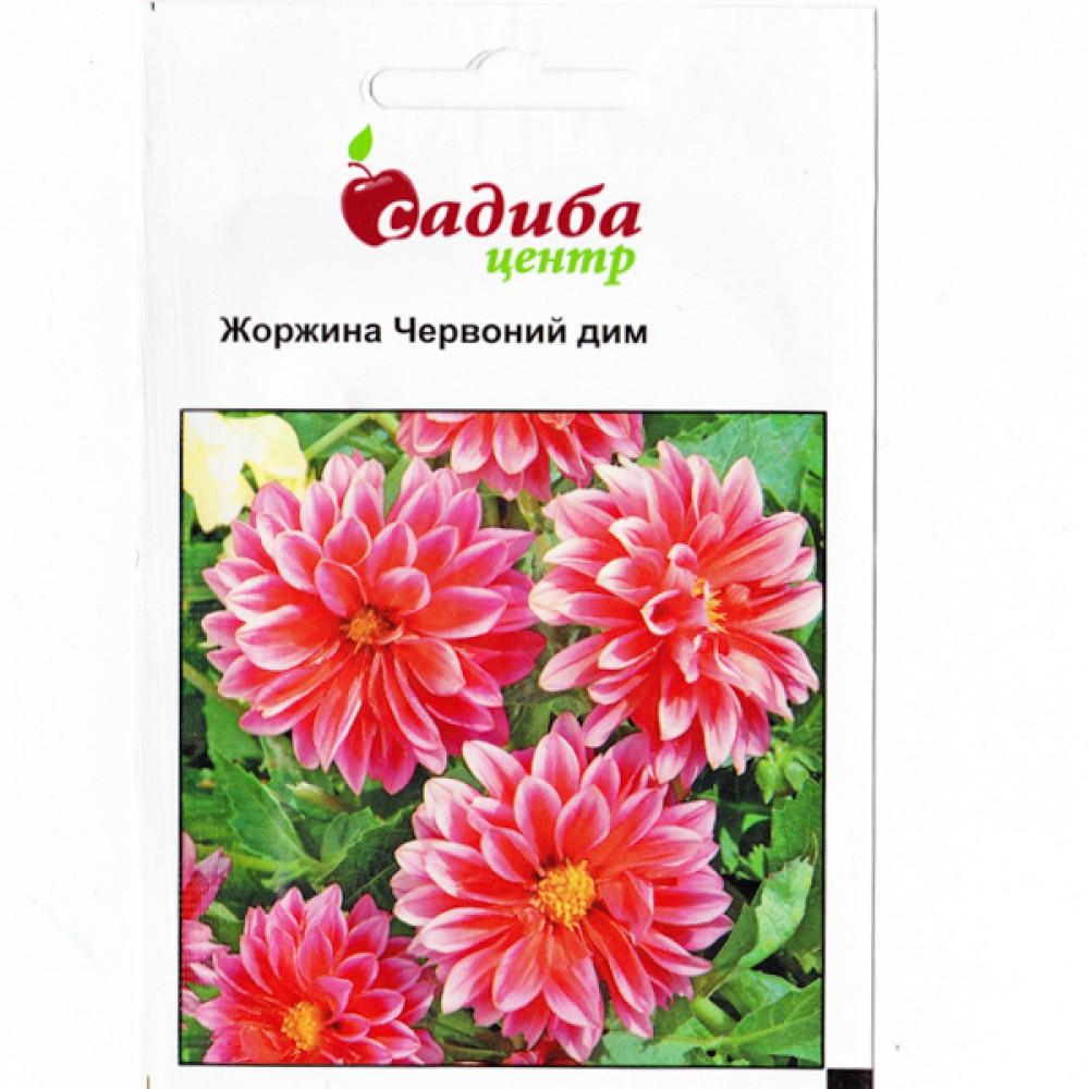Жоржина Червоний Дим 0,1 г (насіння)