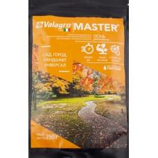 Удобрение MASTER для сада, огорода, ландшафта Осень 250 г