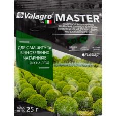 Удобрение MASTER для самшита и вечнозеленых кустарников 25 г