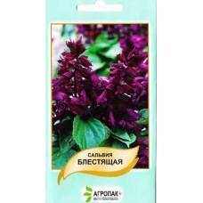 Сальвия блестящая пурпурно-фиолетовая 0,2 г