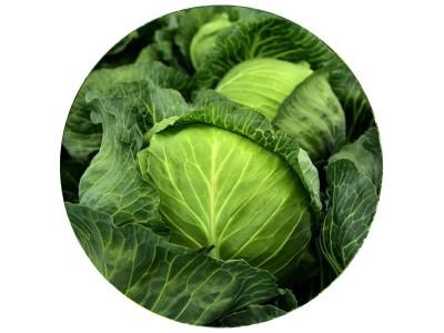 Відео: 10 цікавих фактів про капусту