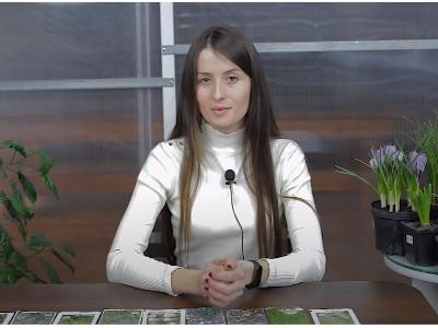 Видео: ТОП 10 пряностей, специй и приправ рекомендую к выращиванию