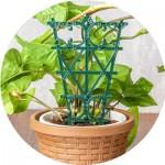 Опори та тримачі для рослин
