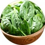 Насіння шпинату (7)