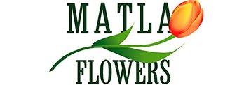 Матла Фловерс